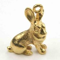 Gold_Plate_21x17_Rabbit_Chines