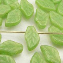 Light_Silky_Green_Leaf_10X6_Cr