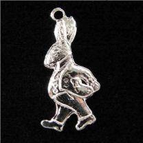 Silver_Plate_20x10_Rabbit_Cari