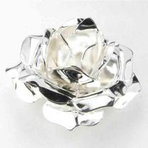 Silver_Plate_32x18_Rose_Stampe